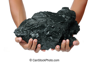 a big lump of coal is held with two hands isolated on white...