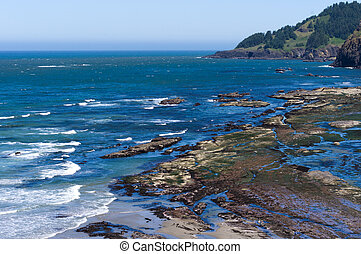 Tidal pools on Oregon Coast - Exposed rocks form a tidal...