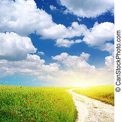 車道, 綠色, 草地