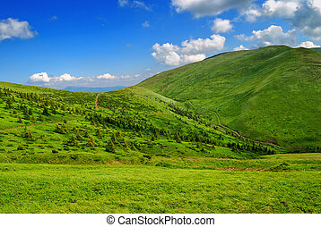 green lush mountain valley with pathway and blue cloudy sky