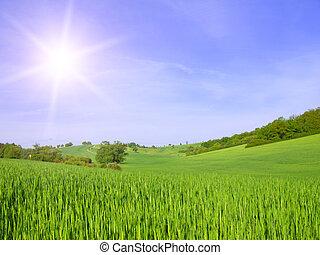 green field on blue sky