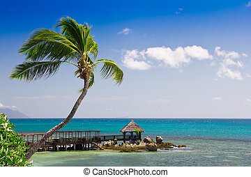 Tropical seascape panorama with palm tree and decking