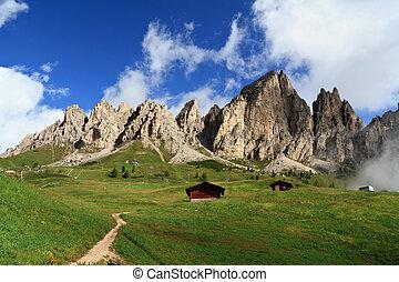 Cir group - Gardena pass - summer landscape of Cir group...