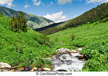 Mountain river - Summer landscape with green grass,...