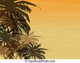 Palm background  - Abstract background with palm