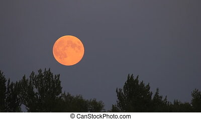 Full moon rise on dark twilight sky background - long shot...