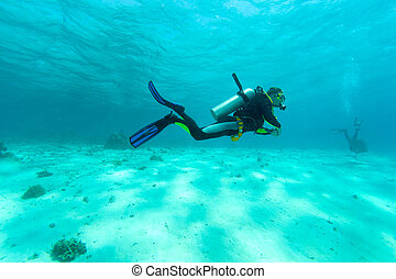 Diver in shallow water