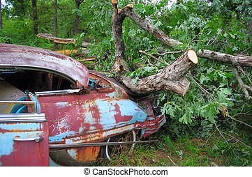 Old Treasures Pass Away - Old Car finished off by Heavy tree...