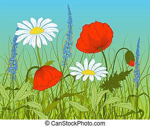 Vector field flowers.