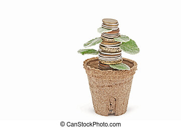 stack of coins in a pot