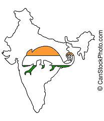 India Chameleon