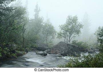 Water stream in the fog - Long exposure forest mountain...