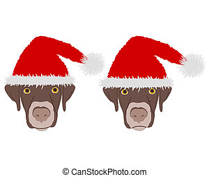 Two dog heads with red santa claus caps
