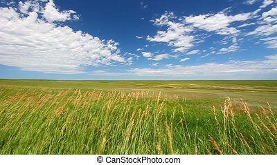 Prairie in Badlands National Park - Vast windswept prairie...