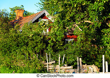 Sweden - Typical swedish wooden cottage behind fruit trees...
