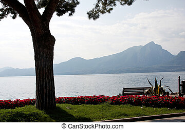 Lake Garda - A bench under a tree facing out into Lake Garda