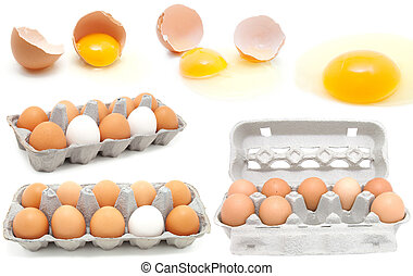 set of eggs on a white background egg is broken