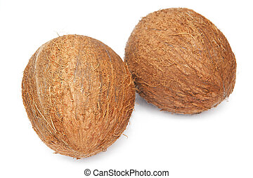 Coconuts on the white background