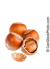 Hazelnuts close up on white background