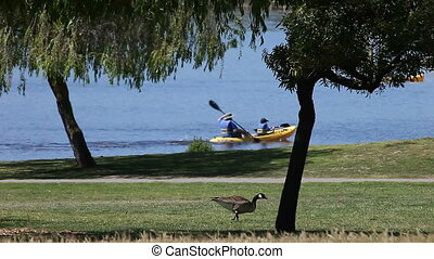 park activities - boaters and bicyclists enjoy a sunny day...