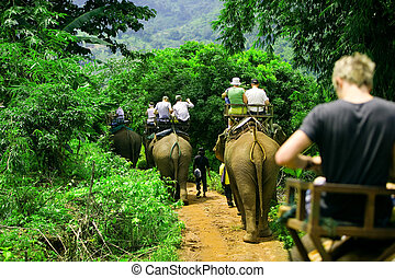 Elephant ride - Tourist group rides through the jungle on...