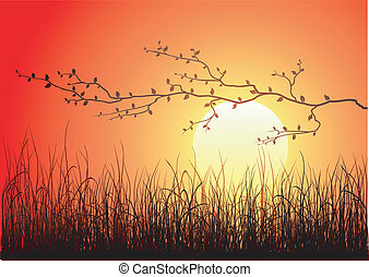 Magic sunset with dark grass and branch
