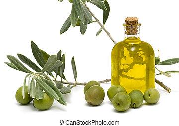 橄欖, 油