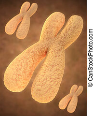 chromosome - artistic impression of a chromosome in...