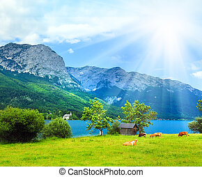 Alpine summer lake view - Beautiful summer Alpine lake...