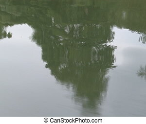Rippled water and shore bulrush - Rippled lake water and...