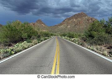 Desert Road - Sonora Desert Road in the Sonoran Desert