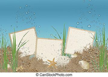 snapshots in ocean sand