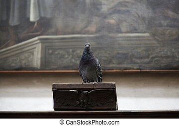 Dove at the pulpit