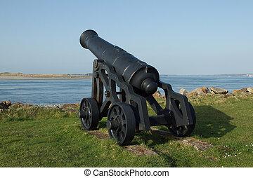Historic cannon.