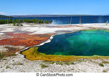 Abyss Pool of Yellowstone - Dazzling colors of Abyss Pool in...