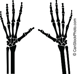 x-ray_hands - x-ray hands