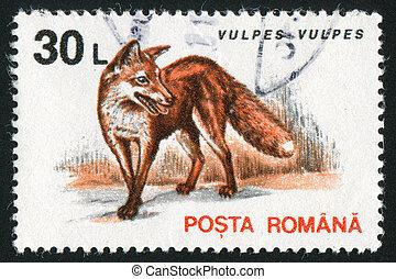 Romania fox - ROMANIA - CIRCA 1956: stamp printed by...