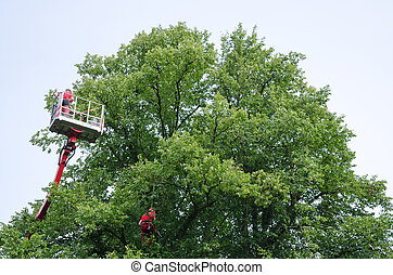 Elevating platform truck - Man working in an elevating...