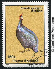 Numida meleagris - ROMANIA - CIRCA 1995: stamp printed by...