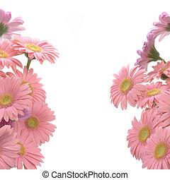 Pink gerbera frame