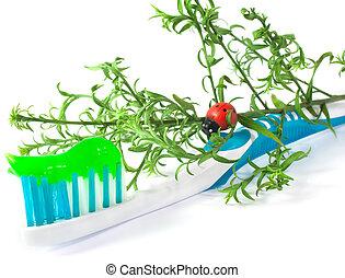 Tooth Paste on the light blue Dental Brush on white...