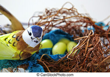 美麗, 玩具, 鳥, 坐, n