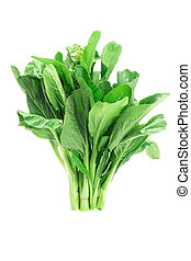 Mustard green - Bunch of fresh green mustard on white...
