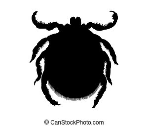 The black silhouette of a tick on white