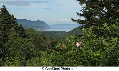 Scenic lookout. Fundy National Park - View from Fundy...