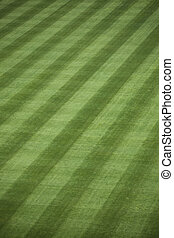 Fresh Outfield Grass - Background of manicured outfield...