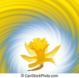 Yellow flower on abstract background