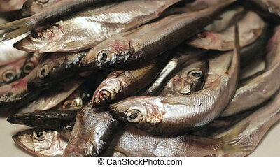 Heap fish - Pile of raw herring