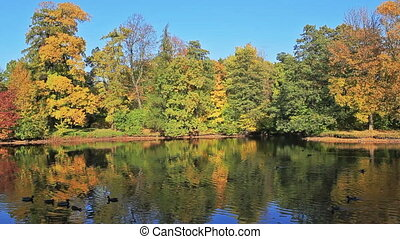 Reflection of autumn - Reflexion of autumn in a water