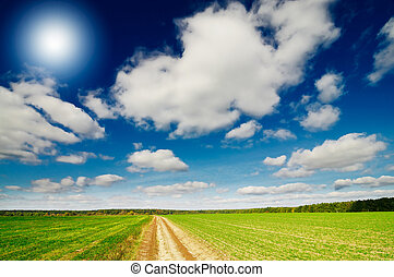 Splendid cumulus clouds and autumn field - Rural footpath...